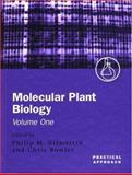 Molecular Plant Biology, , 0199638764