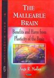The Malleable Brain : Benefits and Harm from Plasticity of the Brain, Moller, Aage R., 1606928813