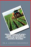 Performance of Agro-Based Industries in Chittoor District of Andhra Pradesh, E. Createspace, 1500238821