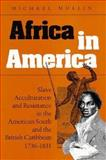 Africa in America : Slave Acculturation and Resistance in the American South and the British Caribbean, 1736-1831, Mullin, Michael, 0252018893
