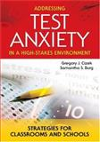 Addressing Test Anxiety in a High-Stakes Environment : Strategies for Classrooms and Schools, Cizek, Gregory J. and Burg, Samantha S., 1412908906
