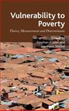 Vulnerability to Poverty : Theory, Measurement and Determinants, , 0230248918
