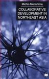 Collaborative Development in Northeast Asia 9780333748930