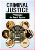 Prison and the Penal System, Michael Newton, 1604138939