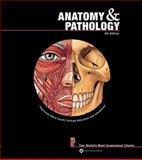 Anatomy and Pathology, Anatomical Chart Company Staff, 1587798948