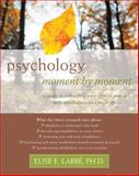 Psychology Moment by Moment 9781572248953