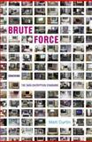Brute Force : Cracking the Data Encryption Standard, Curtin, Matt, 1441918957