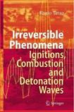 Irreversible Phenomena : Ignitions, Combustion and Detonation Waves, Terao, Kunio, 3540499008
