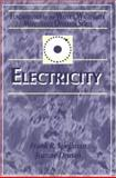 Electricity : Fundamentals for the Water and Wastewater Maintenance Operator, Spellman, Frank R. and Drinan, Joanne, 1566769078
