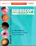 Atlas of Clinical Gastrointestinal Endoscopy, Wilcox, Charles Melbern and Munoz-Navas, Miguel, 1437719090