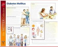 Frank H. Netter Diabetes and Complications : European Netter Poster Series, Freeman, Mark, 0702029092
