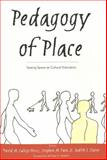 Pedagogy of Place : Seeing Space As Cultural Education, Callejo-Perez, David M., 0820469106
