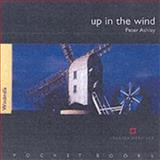 Up in the Wind - Windmills, Ashley, Peter, 1850749108