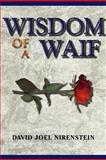 Wisdom of a Waif, David Joel Nirenstein, 1477119124