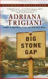 Big Stone Gap, Adriana Trigiani, 0345459202