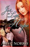 Just a Little Hope, Amy Norris, 1494289229