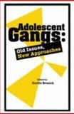 Adolescent Gangs, , 0876309244