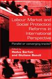 Labour Market and Social Protection Reforms In International Perspective : Parallel or Converging Tracks?, Sarfati, Hedva and Bonoli, Giuliano, 0754619265