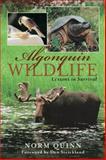 Algonquin Wildlife, Norm Quinn, 1896219284