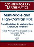 Multi-Scale and High-Contrast PDE, , 0821869299