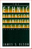 The Ethnic Dimension in American History, Olson, James S., 0312089341