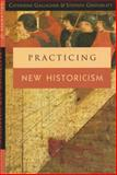 Practicing New Historicism, Gallagher, Catherine and Greenblatt, Stephen, 0226279359