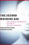 The Second Machine Age, Erik Brynjolfsson and Andrew McAfee, 0393239357