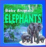Elephants, Kate Petty, 1932799427