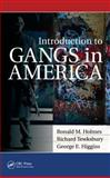 Introduction to Gangs in America, Ronald M. Holmes and Richard Tewksbury, 1439869456