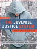 The Juvenile Justice System 7th Edition