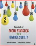 Essentials of Social Statistics for a Diverse Society 2nd Edition