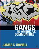 Gangs in America's Communities, Howell, James (Buddy) C., 1412979536