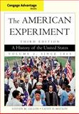Cengage Advantage Books: the American Experiment : A History of the United States, Volume 2: Since 1865, Gillon, Steven M. and Matson, Cathy D., 0840029543