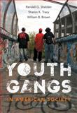 Youth Gangs in American Society, Brown, William B. and Shelden, Randall G., 1133049567
