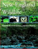 New England Wildlife, Richard M. DeGraaf and Mariko Yamasaki, 0874519578