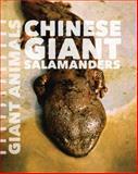 Chinese Giant Salamanders, Susan Schafer, 162712960X