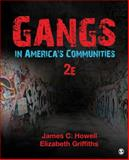 Gangs in America's Communities, Howell, James (Buddy) C. (Carlton) and Griffiths, Elizabeth A., 1483379728