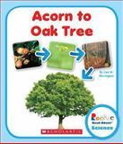 Acorn to Oak Tree, Lisa M. Herrington, 0531249751