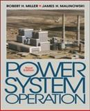 Power System Operation 9780070419773