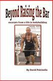 Beyond Raising the Bar, David Pulcinella, 1481849778