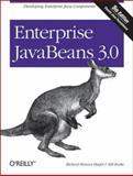 Enterprise JavaBeans 3. 0, Monson-Haefel, Richard and Burke, Bill, 059600978X
