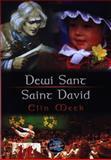Dewi Sant : Saint David, Meek, Elin, 1859029809