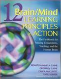 12 Brain/Mind Learning Principles in Action : Developing Executive Functions of the Human Brain, Caine, Renate Nummela and Klimek, Karl, 1412909848