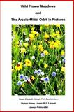 Wild Flower Meadows and the ArcelorMittal Orbit in Pictures, Llewelyn Pritchard, 149375985X