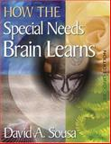 How the Special Needs Brain Learns, Sousa, David A., 1412949874