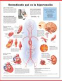 Understanding Hypertension (Entendiendo Que es la Hypertension), Anatomical Chart Company Staff, 1587799928