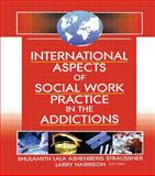 International Aspects of Social Work Practice in the Addictions, Straussner, Shulamith Lala, 0789019973