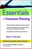 Essentials of Treatment Planning, Maruish, Mark E., 0471419974