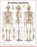 The Skeletal System Anatomical Chart in Spanish (el Sistema Esqueletico), Anatomical Chart Company Staff, 1587799987