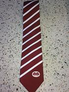 Image for the Neil Tie with Parrish Hall Logo product